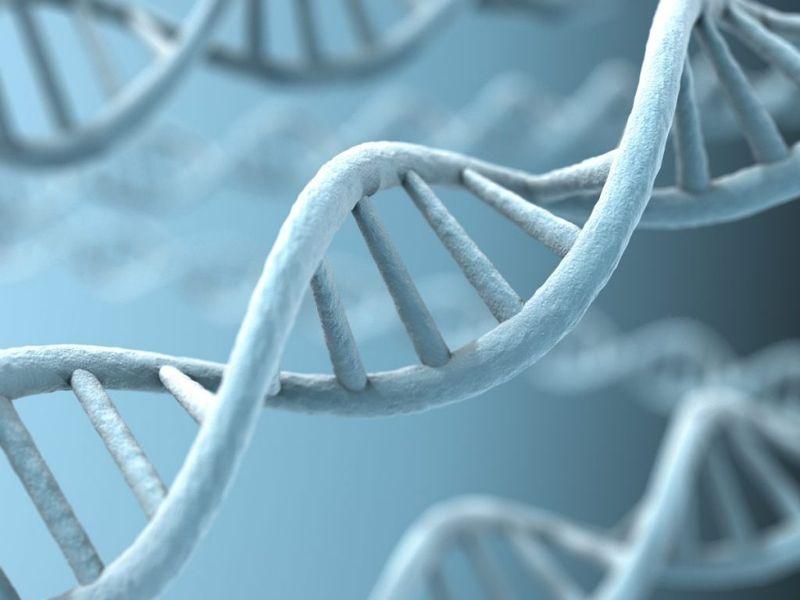 genetics and Fuchs' dystrophy