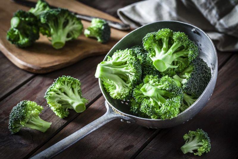 broccoli, dog, cook, prepare