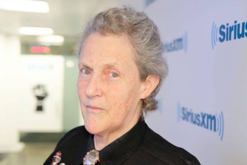hug machine Temple Grandin