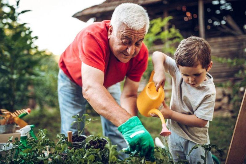 gardening hobbies brain