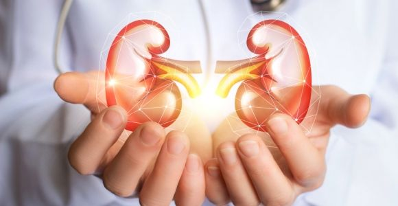 Habits for Better Kidney Health