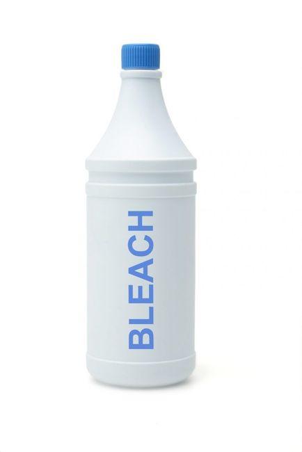gnats bleach
