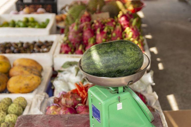 heavy watermelon juicy water