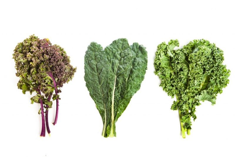 There are many types of kale