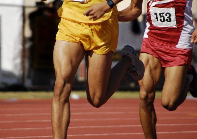 thigh muscles femur