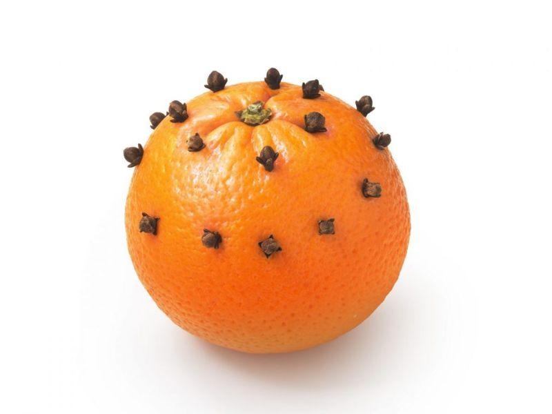 flies orange