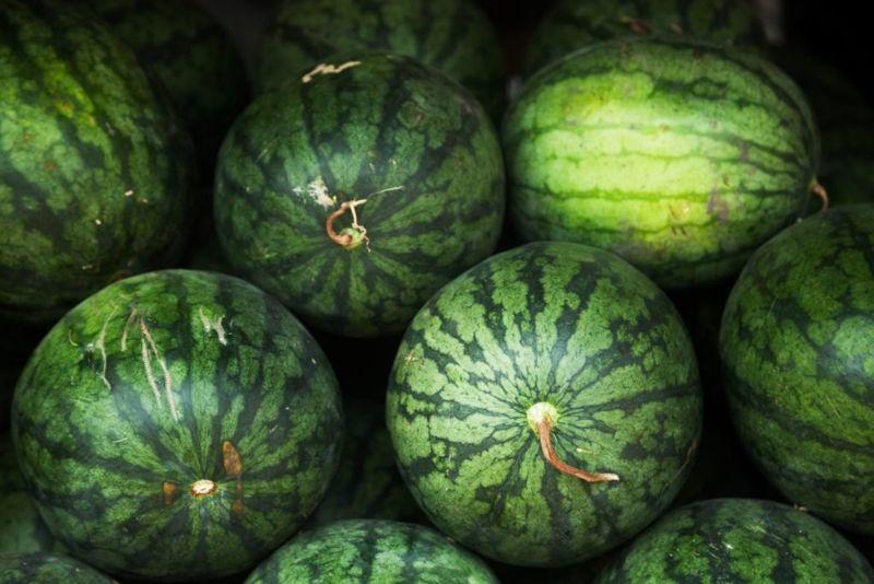 watermelon scratches skin
