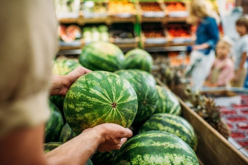 woman picking watermelon ripe