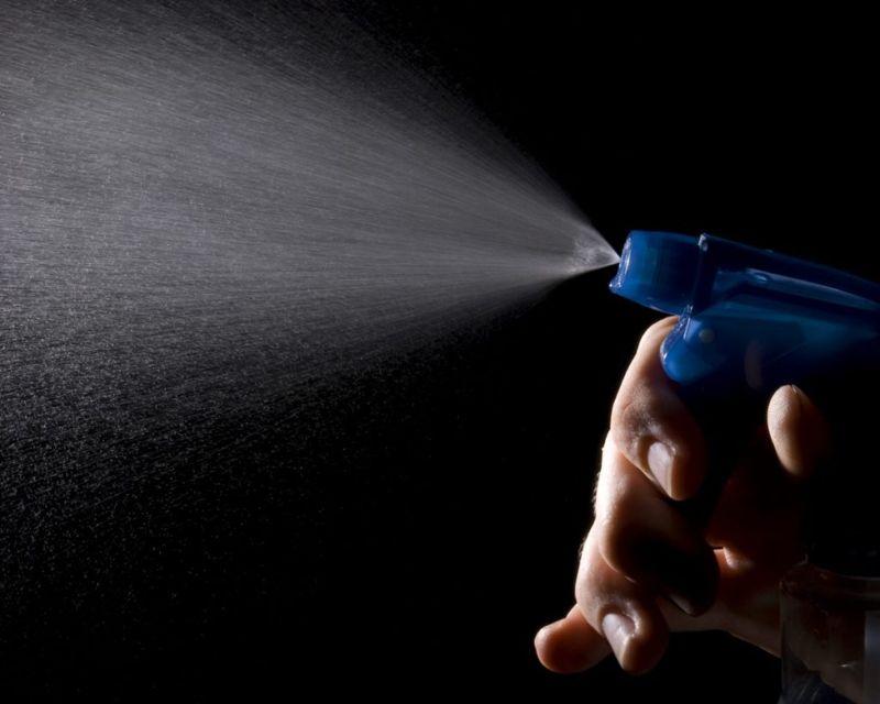flies fly spray