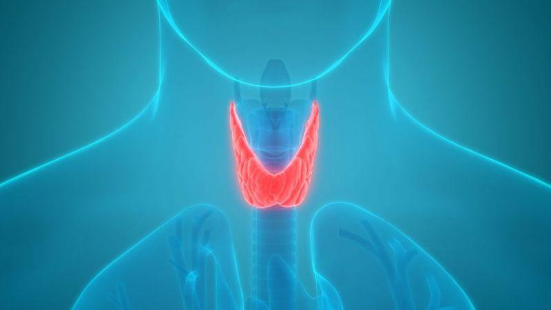 cancer, severe, thyroid, diabetes mellitus
