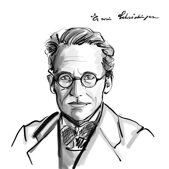 who was erwin Schrödinger