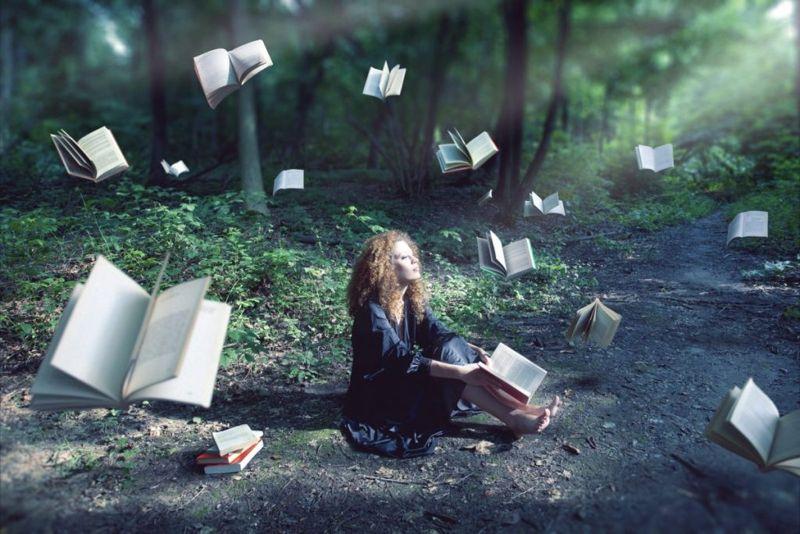 literature books novels quiz trivia