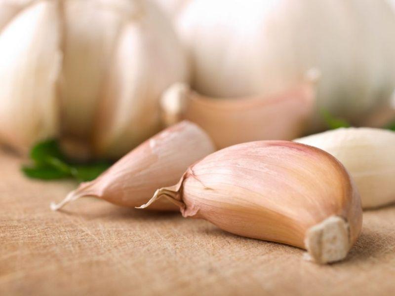 fresh garlic casserole flavor