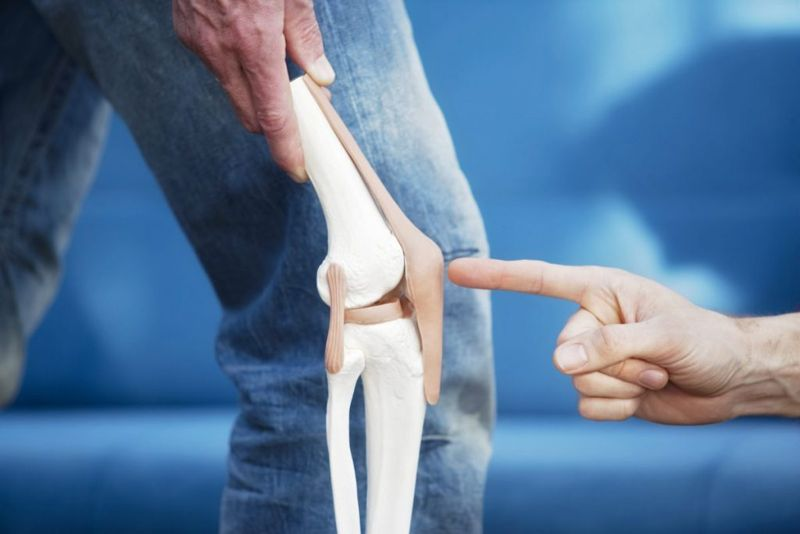 knee joint cartilage
