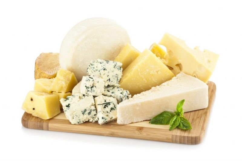 serving guidelines dogs cheese