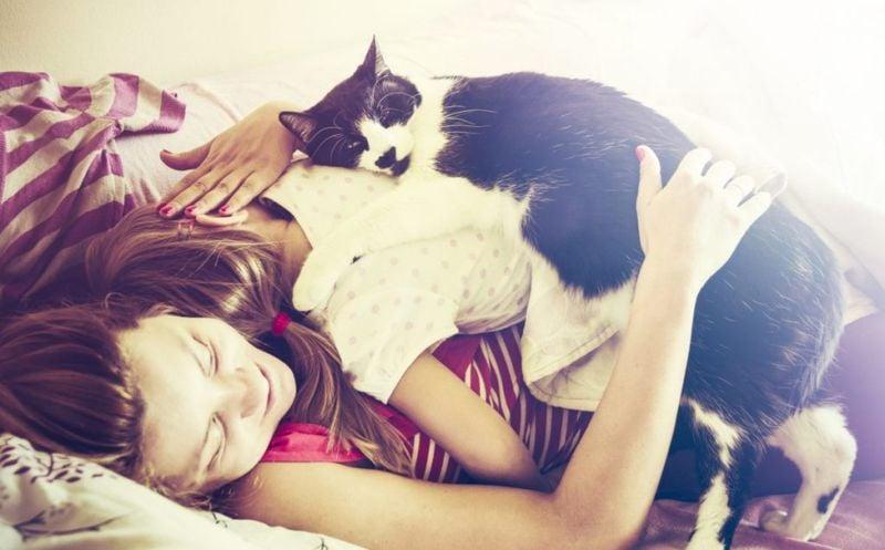 sleep cat bed kids safe