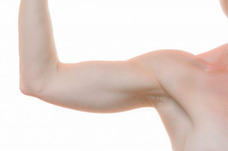 Upper Arm Elbow