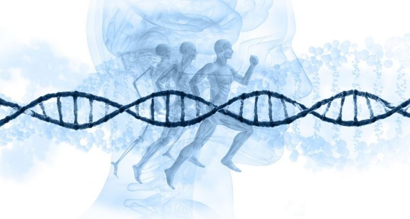 Genetic frequency