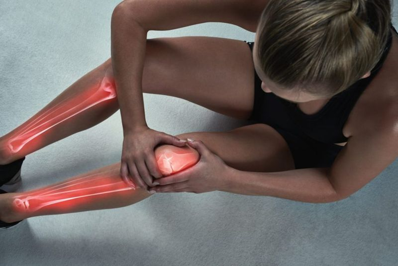 knee ankle joint