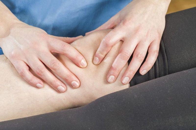 insall-salvati knee