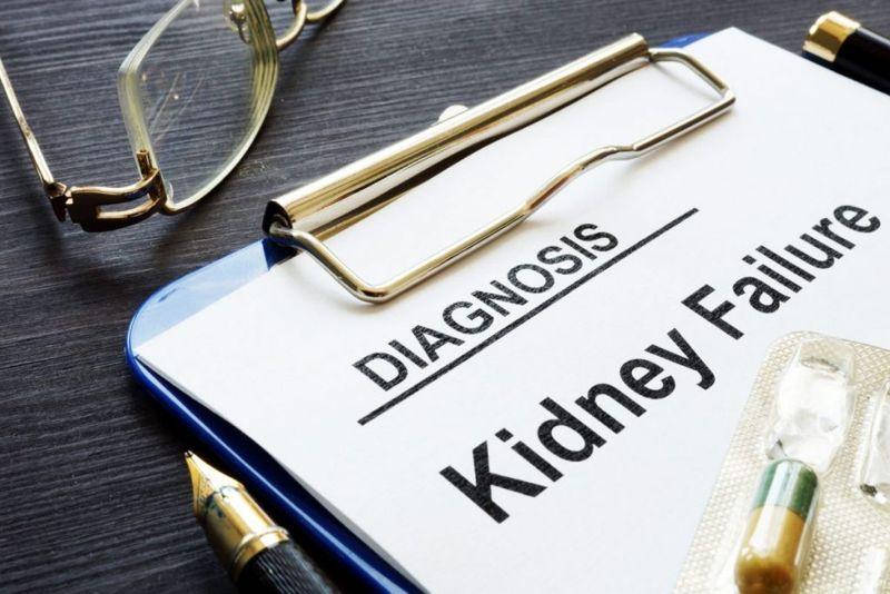 Kidney Disease Filter