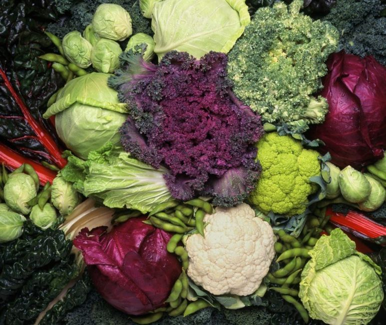 Kale is a cruciferous vegetable