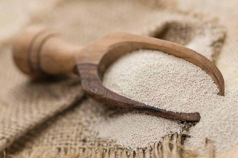Make Bread, Activate Yeast