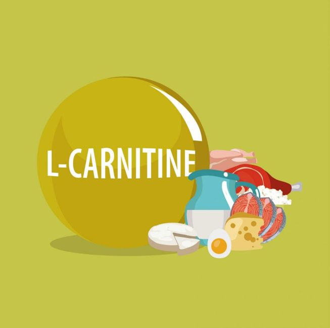 L-carnitine food sources caricature