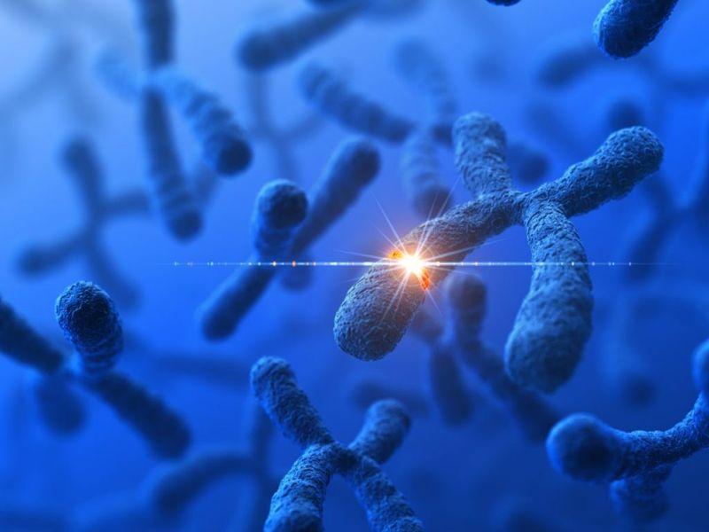 Genetic Mutation Inherited