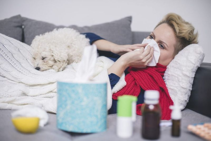Flu Virus H1N1