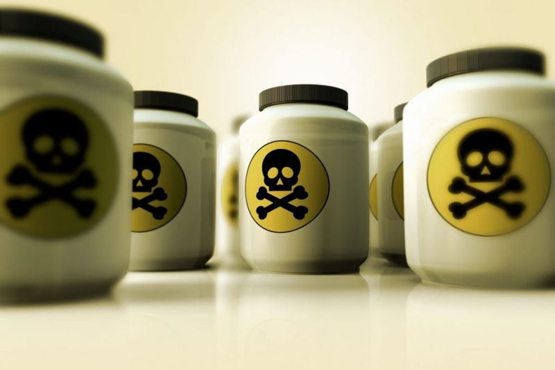 toxins dog temperature fever poison