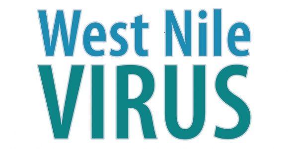 10 Symptoms of West Nile