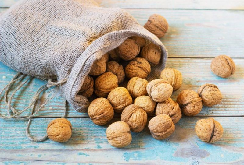Pile of walnuts in shellin a bag on a wooden background . Linen sack with walnuts in the background