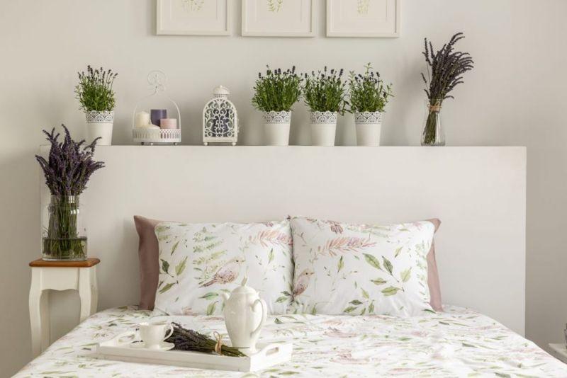 decoration lavender bedroom indoor