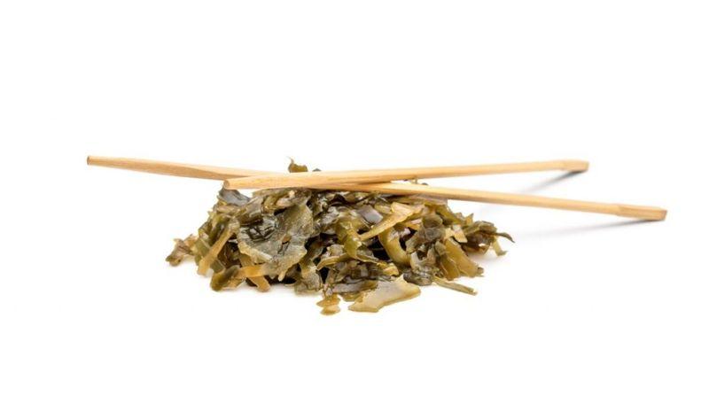 arame sea plant chopsticks