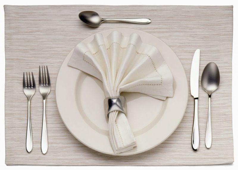 napkin plate casual
