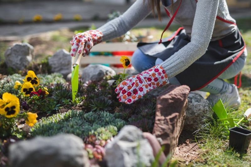 Flower Bed Care Essentials Tips