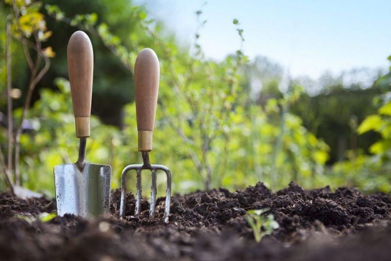 soil earth ready to grow