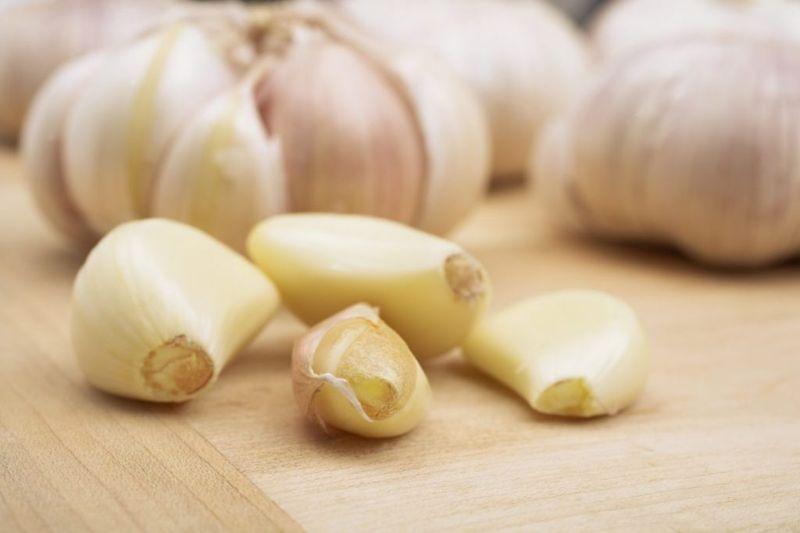 carbohydrates onion garlic