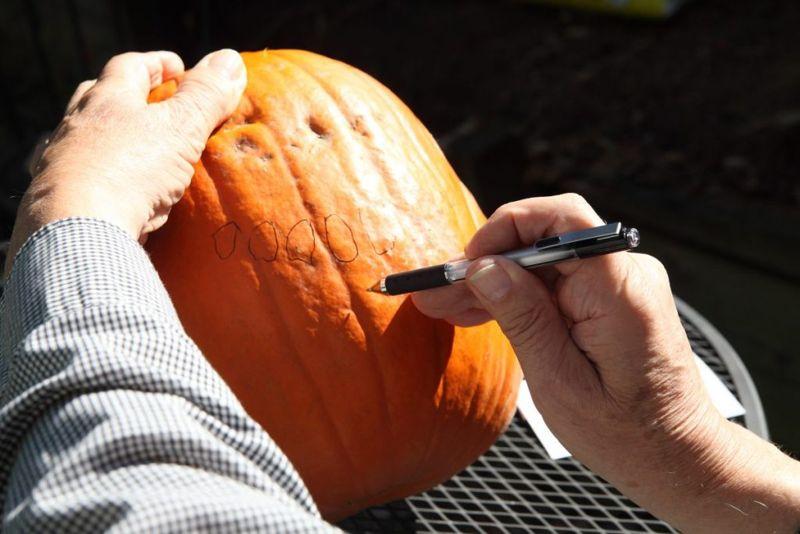 process design pumpkin