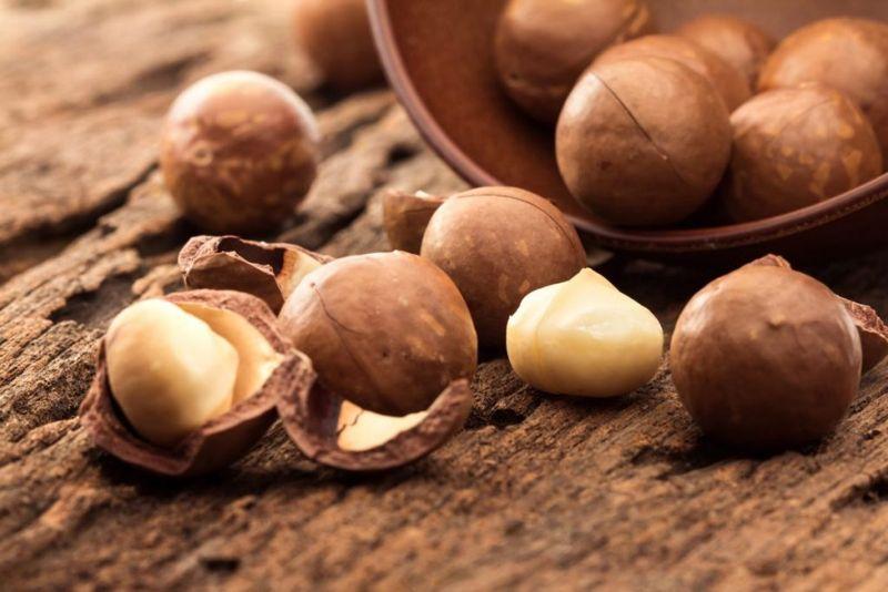 Macadamia Fatal Toxin