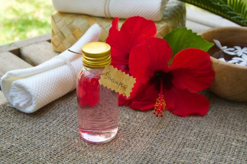 shoe flower hibiscus shampoo