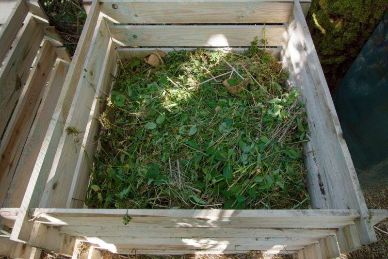 compost pile, layers, activators, soil