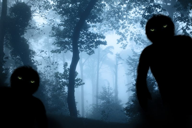 Two monsters with green eyes in misty forest landscape