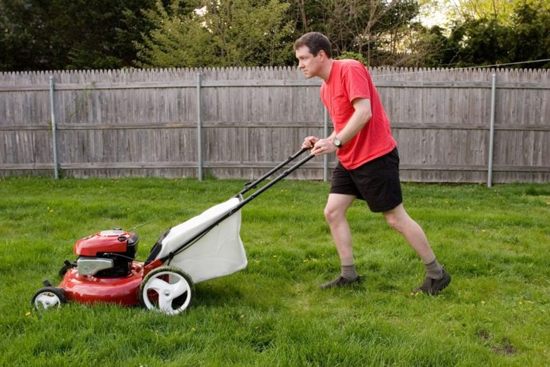 stop chiggers by mowing