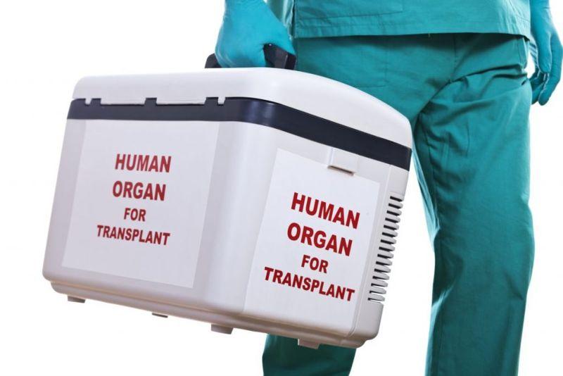 preservation organs methods