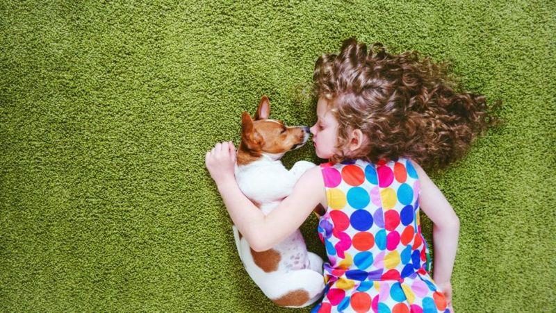 Puppy with child