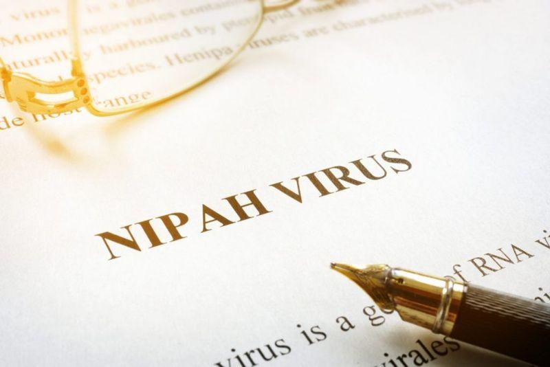 Nipah Virus Research