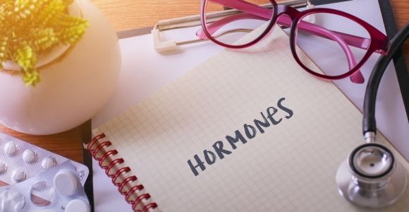 Hormones: The Body's Chemical Messengers