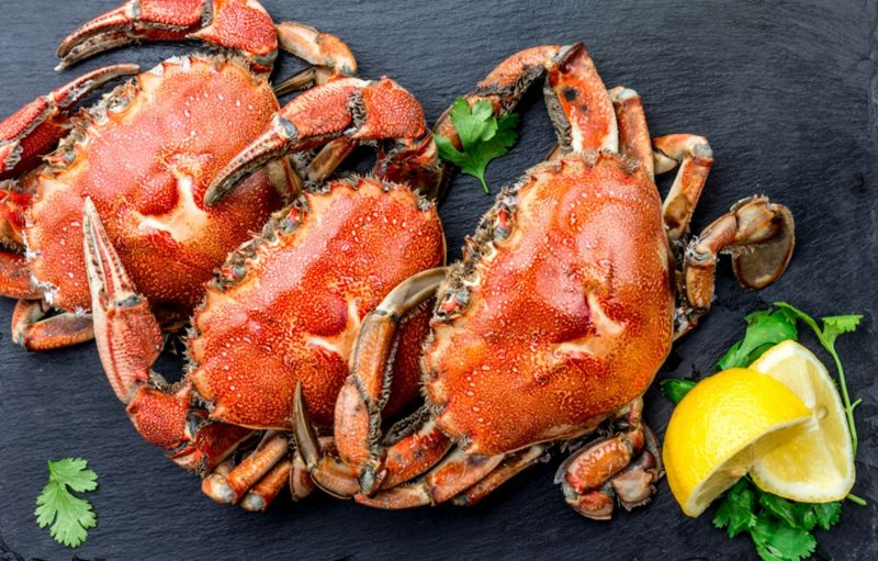 Cooked crabs on black plate served with white wine, black slate background